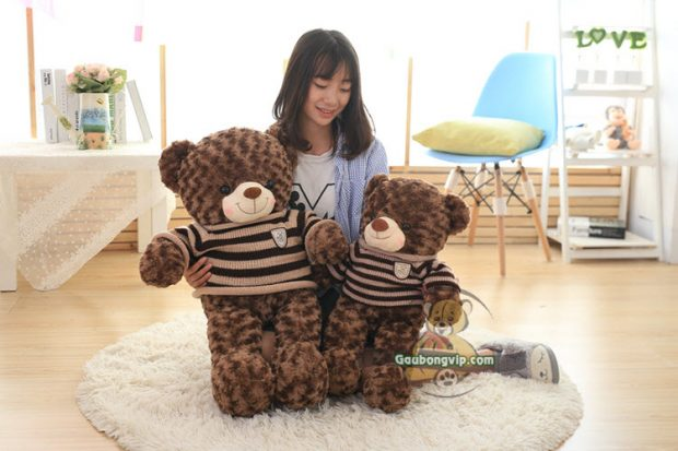 Size 3 & Size 5 - Gấu Teddy Socola