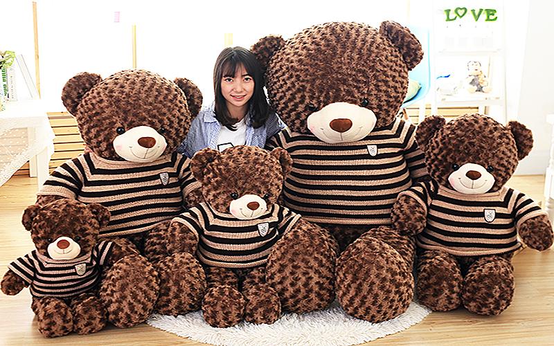 Shop Gấu Teddy Cần Thơ |đủ Size nhỏ đến Size lớn Gấu bông Cần Thơ