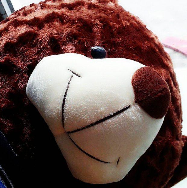 Gấu bông Cần Thơ - Gấu Teddy Cần Thơ