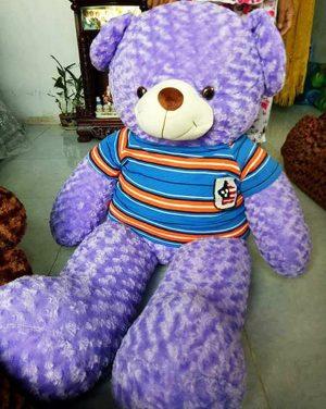 Gấu Teddy Lavender