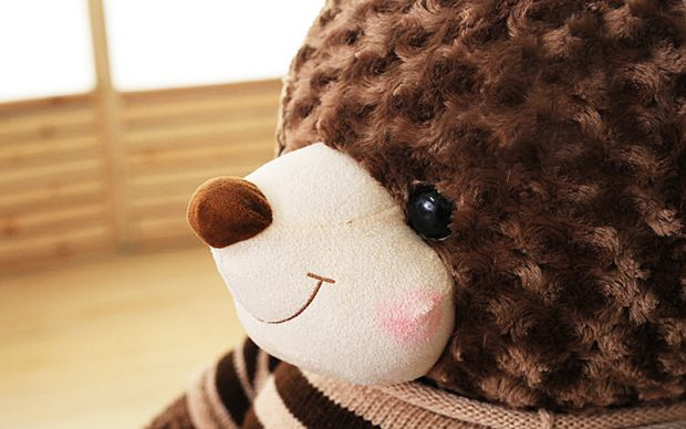 8-gau-teddy-nau-socola