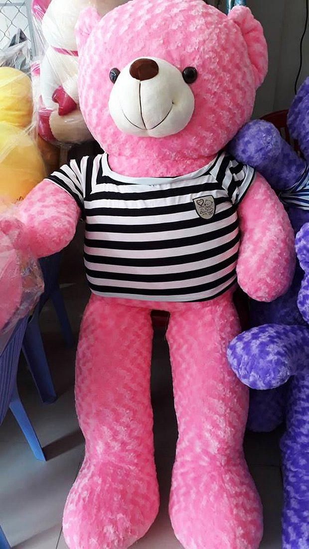 Chú gấu hồng khổ 1.6 cực dễ thương