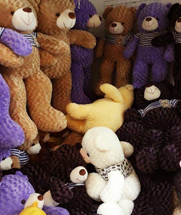 Shop gấu bông Teddy Vĩnh Long có nhiều size và màu sắc lựa chọn...