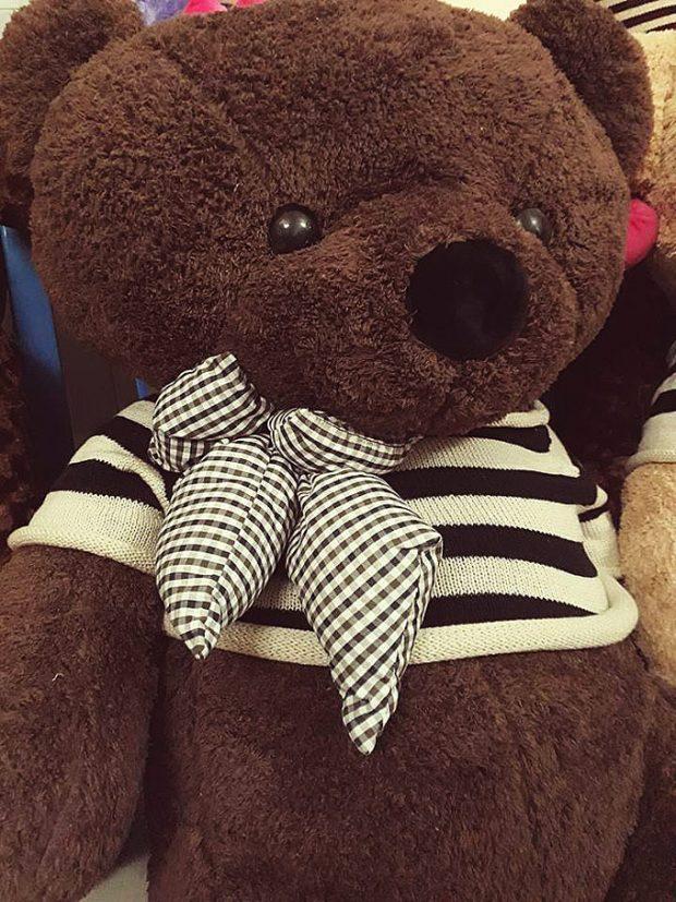 Gấu Teddy lông xù - Gấu bông lông xù - Gấu bông cao cấp