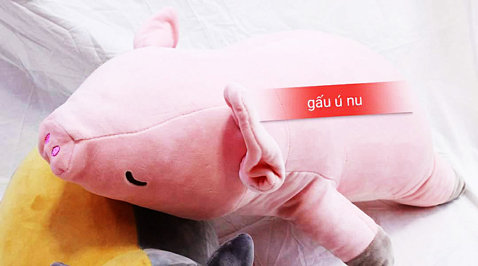 Heo bông - Thú nhồi bông Heo - Gấu bông heo - Lợn Bông | Shop Ú Nu