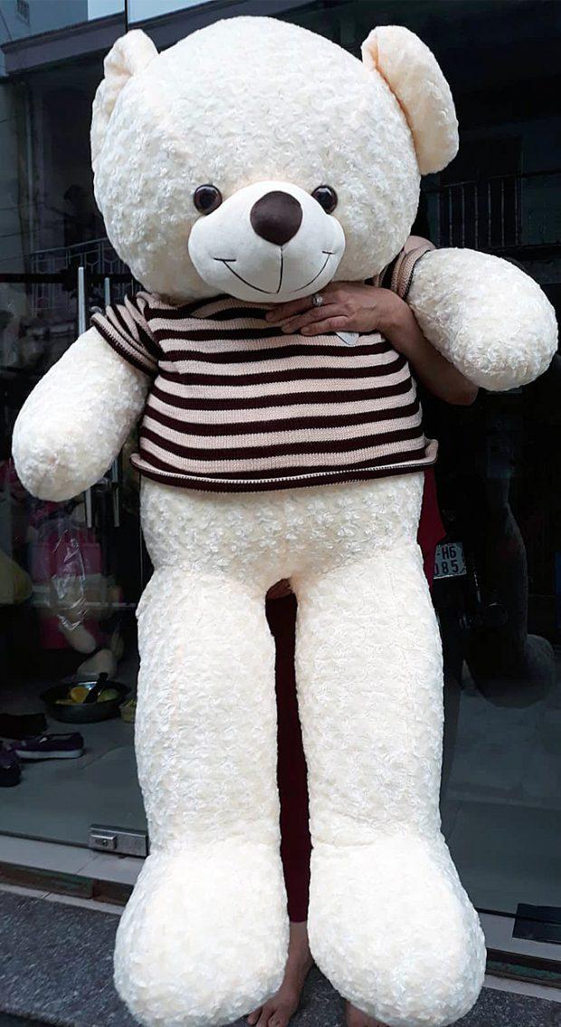 Gấu bông Teddy màu trắng size 1.6m