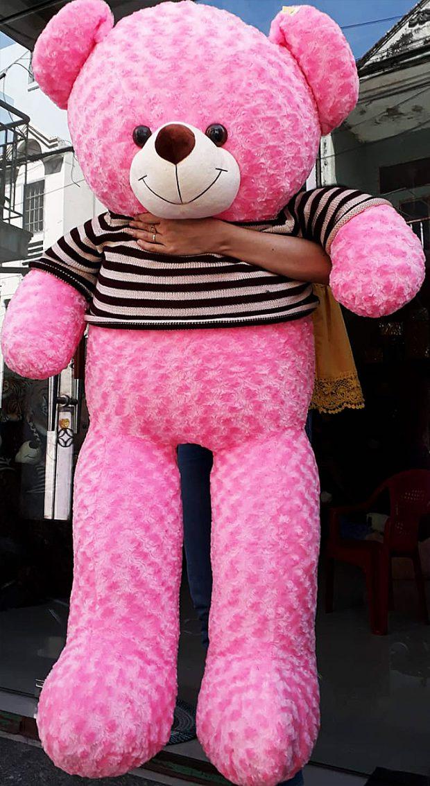 Gấu bông Teddy màu hồng size 1.6m
