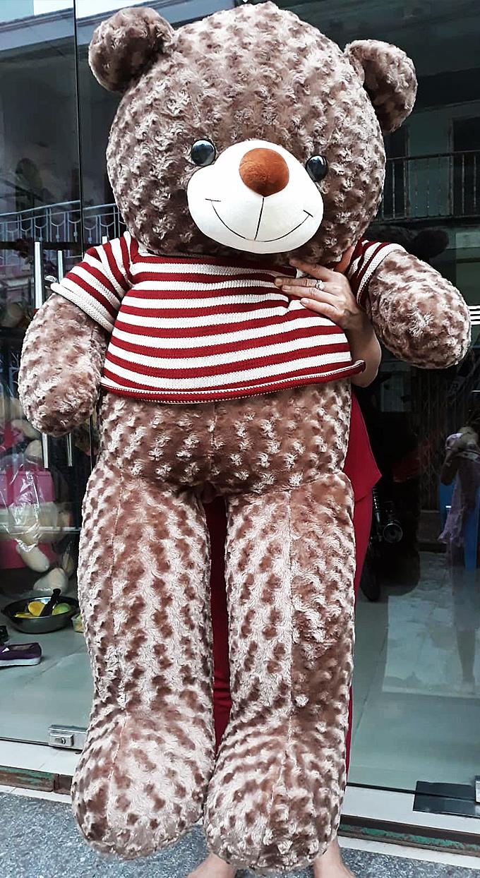 Gấu bông Teddy màu xám tro size 1.6m