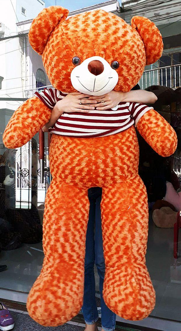 Gấu bông Teddy màu cam size 1.6m