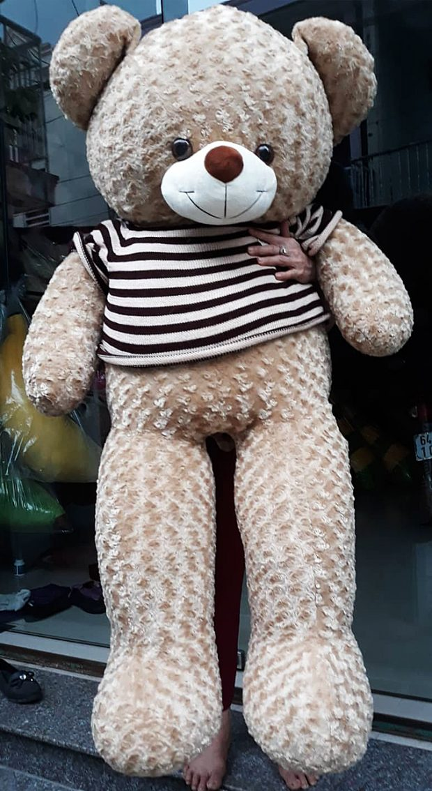 Gấu bông Teddy màu cà phê sữa size 1.6m