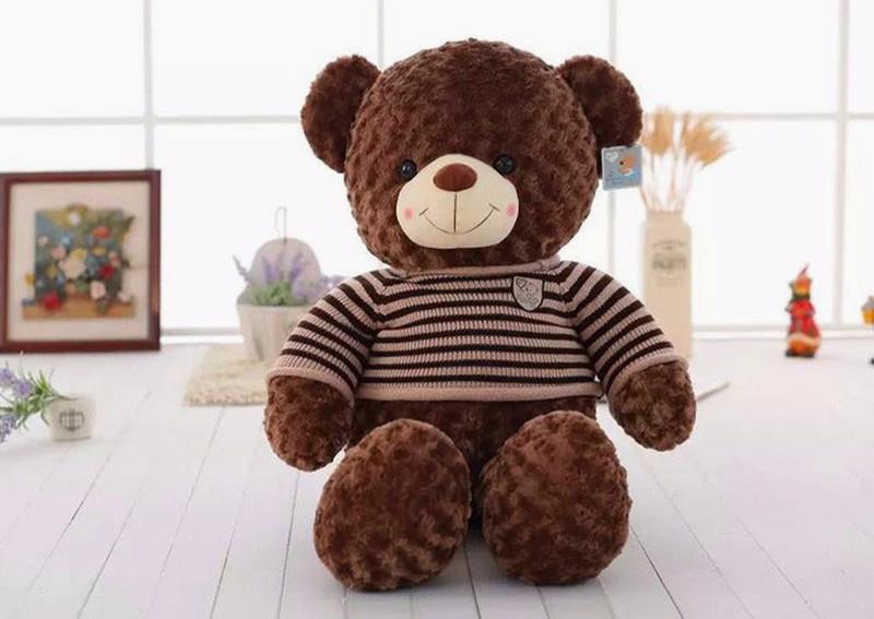 Gấu Teddy Socola - Shop Gấu Bông Cần Thơ