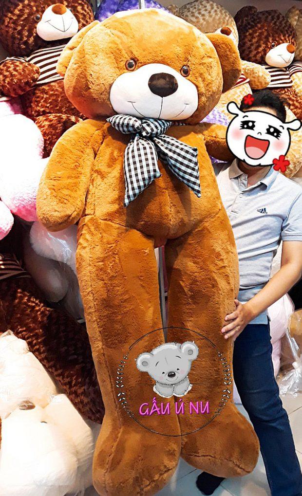 Gấu to hơn cả người (người mẫu cao 1m65)