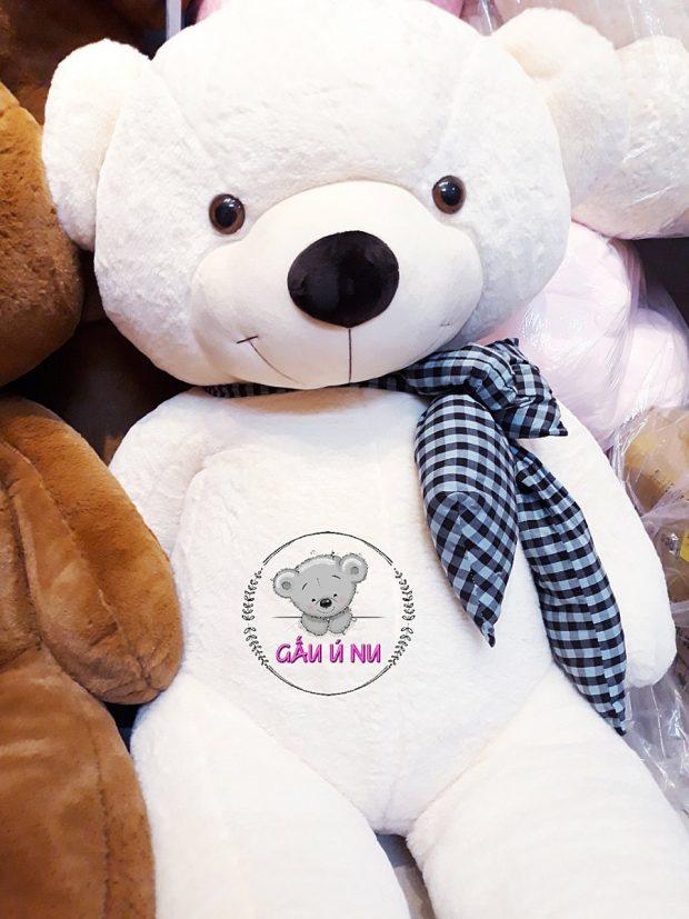 Mẫu màu trắng - Gấu bông Teddy khổng lồ