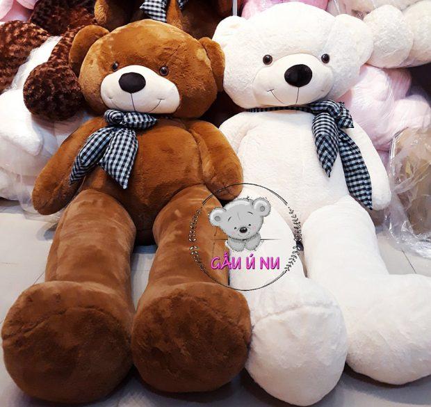 Hình chụp thật 100% tại shop Gấu Ú Nu - Shop Gấu bông Cần Thơ